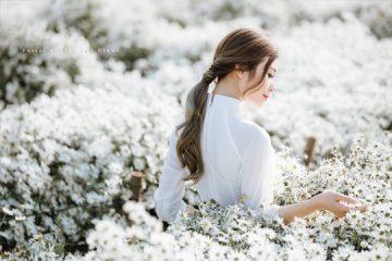 Áo dài trắng và Cúc họa mi – Nét thuần Việt