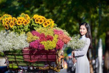Nồng nàn mùa thu Hà Nội